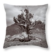 Cedar Landscape Throw Pillow by Roger Snyder