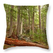 Cedar Logs At Garibaldi Throw Pillow
