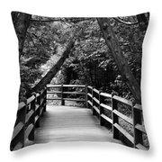 Cedar Pathway Throw Pillow