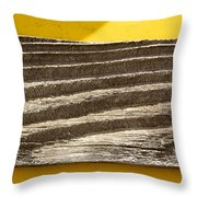 Cedar Plank On Yellow Throw Pillow