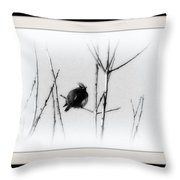 Cedar Waxwing - Black And White  Throw Pillow