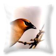 Cedar Waxwing - Img_9833-004 Throw Pillow