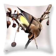 Cedar Waxwing - Img_9835-7x5 Throw Pillow