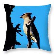 Cedar Waxwing In Tree 030515aaa Throw Pillow