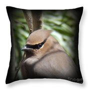 Cedar Waxwing Profile Throw Pillow