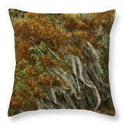 Cedars In The Fall Throw Pillow