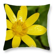 Celandine Throw Pillow