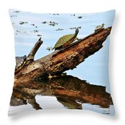 Happy Family Of Turtles Throw Pillow