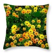 Celebration Of Yellows And Oranges Study 3 Throw Pillow