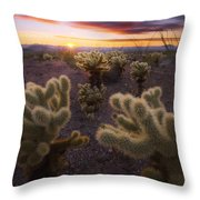Celebration Throw Pillow by Peter Coskun