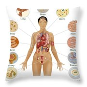 Cells Of The Body Throw Pillow