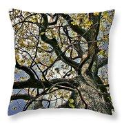 Cemetery Oak Throw Pillow