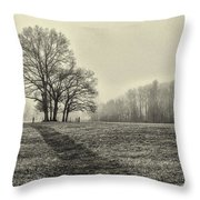 Cemetery Trees In The Fog E185 Throw Pillow