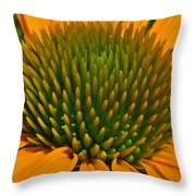 Center  Of Cone Flower Throw Pillow