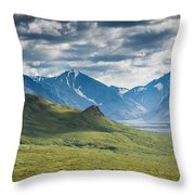 Center Of The Valley Throw Pillow