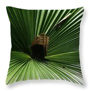 Center Stage Throw Pillow by Sean Green