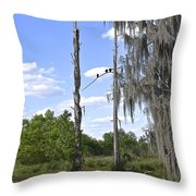 Central Florida Wetlands Throw Pillow