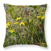 Central Florida Wildflowers Throw Pillow