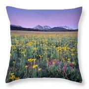 Central Idaho Color Throw Pillow