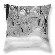Central Park Dressed Up In White Throw Pillow