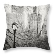 Central Park Lamppost In New York City Throw Pillow