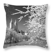 Central Park - Nyc Throw Pillow