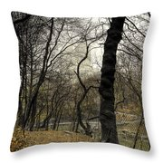 Central Park Rainy Day Number Three Throw Pillow