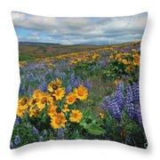 Central Washington Spring Throw Pillow