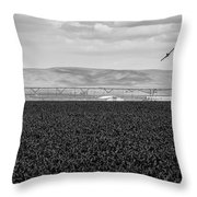 Central Washington, Usa. A Crop Duster Throw Pillow
