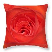 Centre Of A Rose Throw Pillow