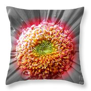 Centre Of Beauty Throw Pillow