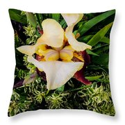 Centrepiece  Throw Pillow