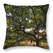 Century Tree Throw Pillow