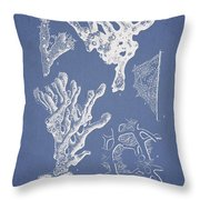 Ceratodictyon Spongiosum Zanard Throw Pillow