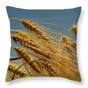 Cereals Throw Pillow