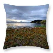 Cerknica Lake Throw Pillow