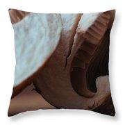 Cetacean Crimini Throw Pillow