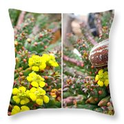 Chafer Beetle On Medusa Succulent In 3d Stereo Throw Pillow