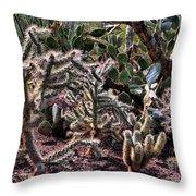 Chainfruit Cholla Throw Pillow