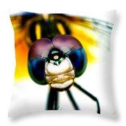 Chakra Warrior Throw Pillow