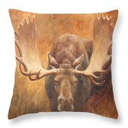Bull Moose - Challenge Throw Pillow
