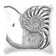 Chambered Nautilus Throw Pillow