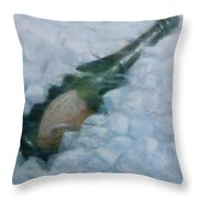 Champagne On Ice Throw Pillow