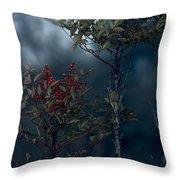 Change Of Season Throw Pillow by Bonnie Bruno