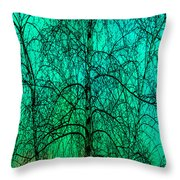 Change Of Seasons Throw Pillow by Bob Orsillo