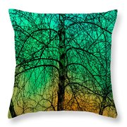 Change Of Seasons Number Tw0 Throw Pillow