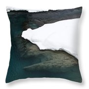 Changing Course Throw Pillow