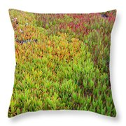 Changing Landscape I Throw Pillow