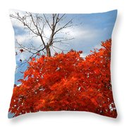 Changing When The Time Is Right Throw Pillow