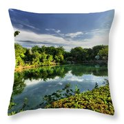 Chankanaab Lagoon Reflections Throw Pillow